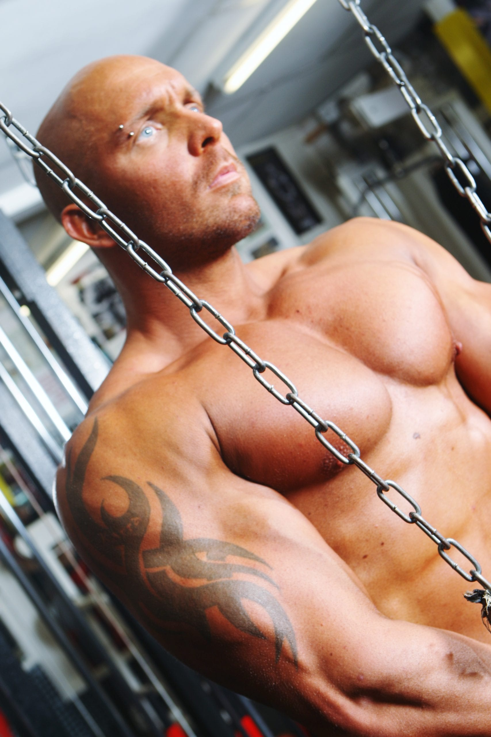 Bodybuilding Movies To Watch Out For in 2013