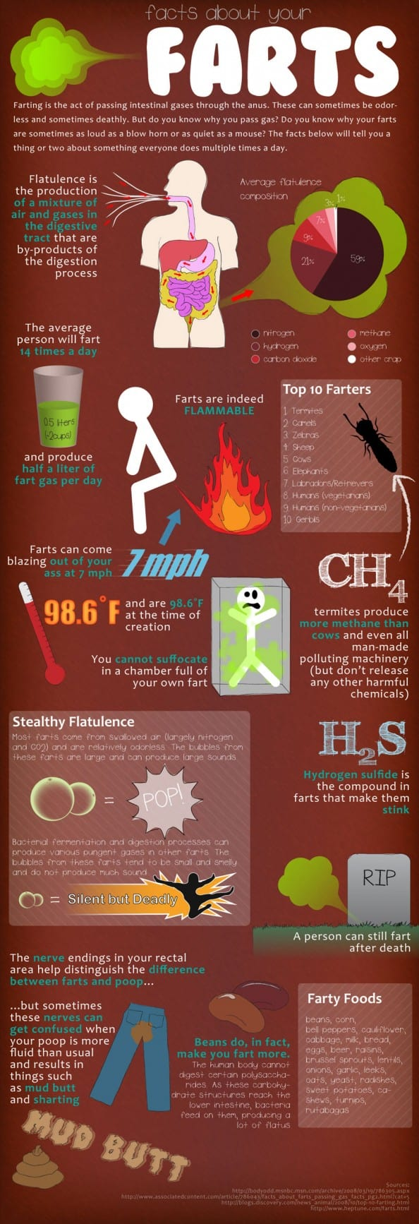 Facts About Your Farts | Infographic