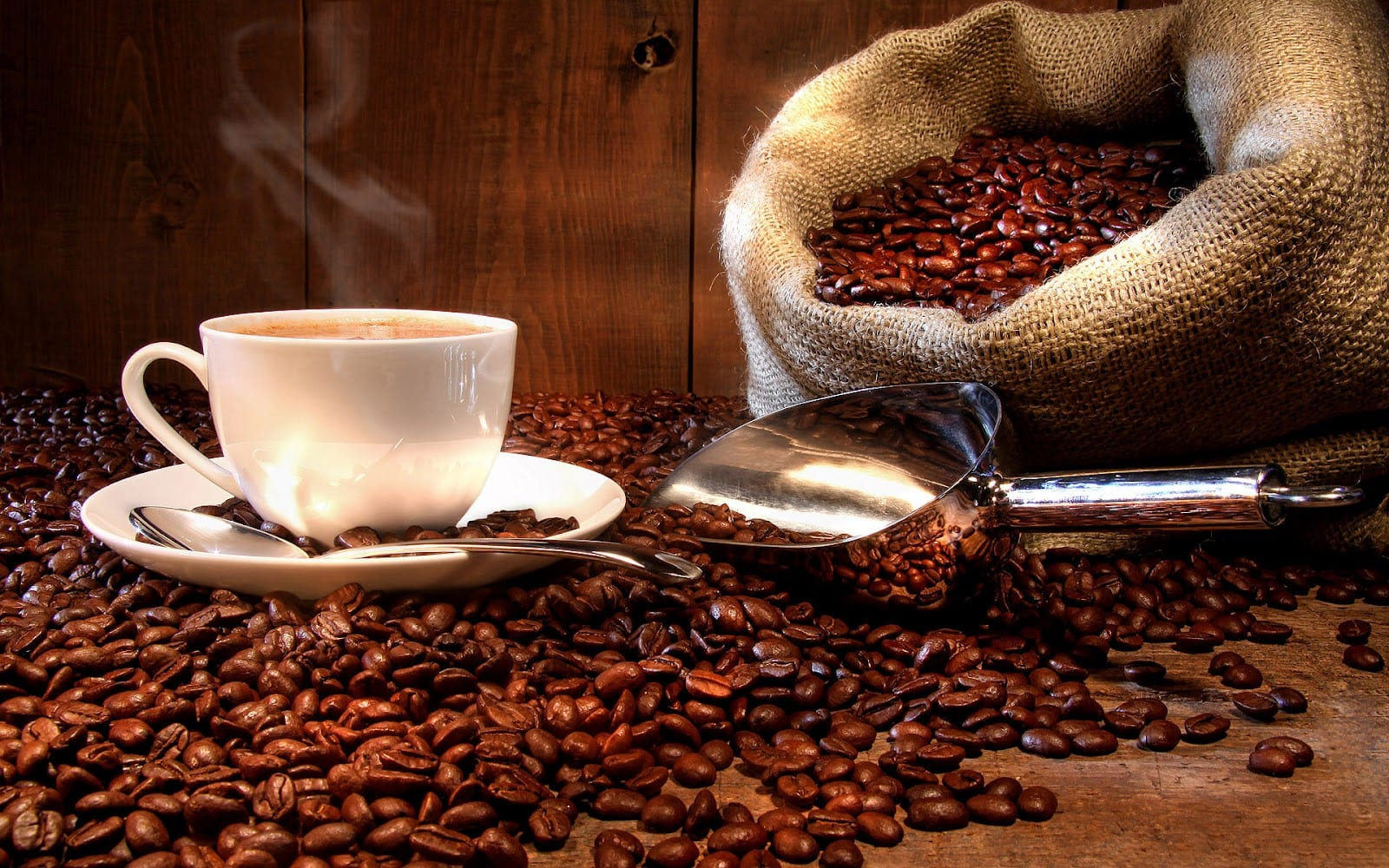 Does Caffeinated Coffee Offer Any Fat loss Benefits?