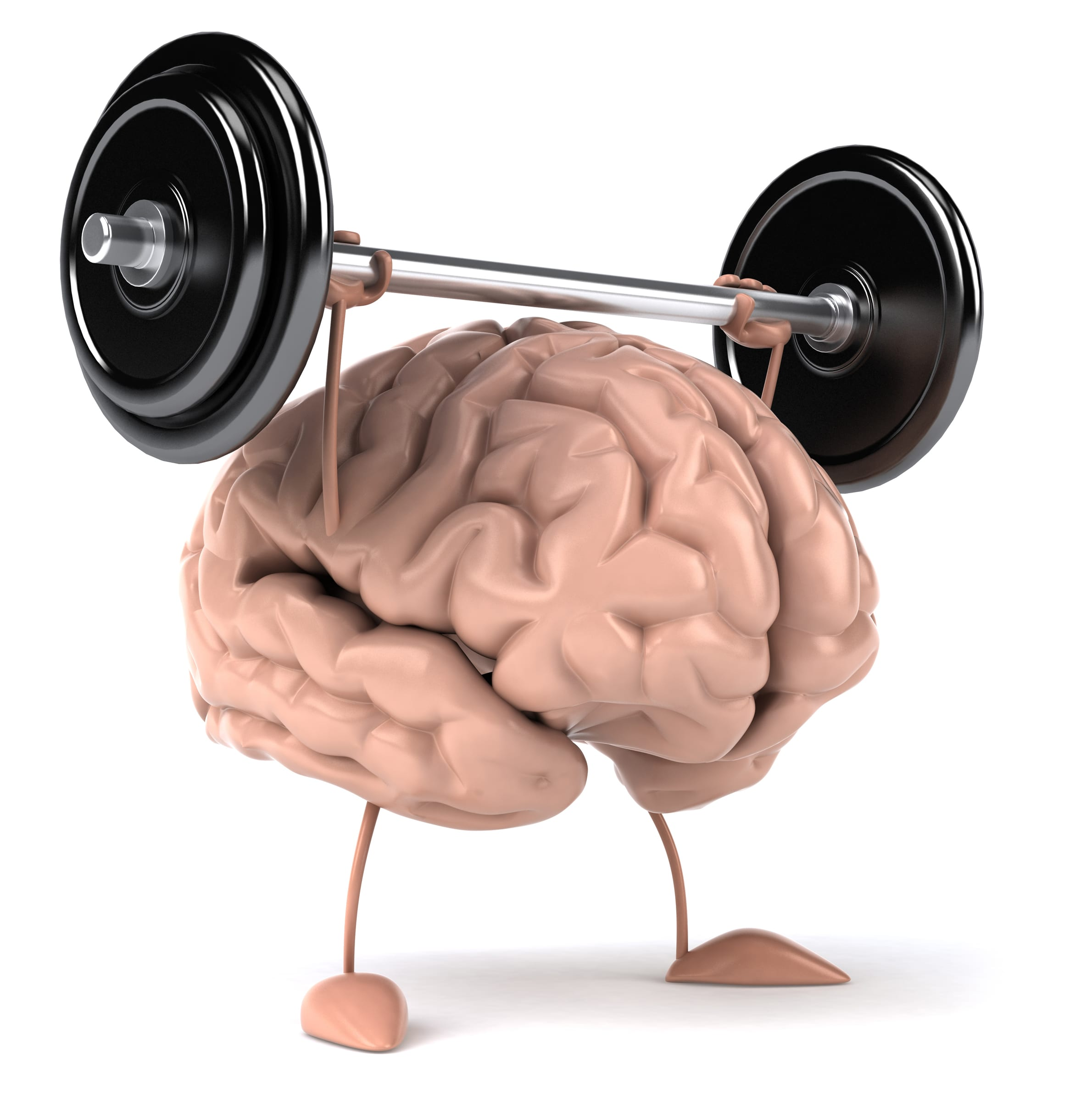 Greater Strength, Bigger Muscle = Bigger Brain?