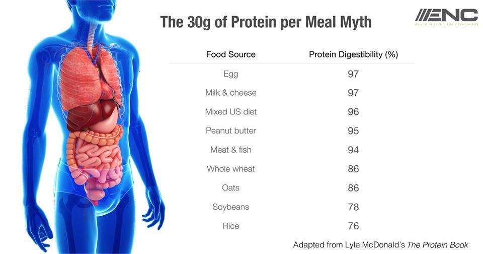 The Myth About Protein – Something We Thought You'd Like To Know!