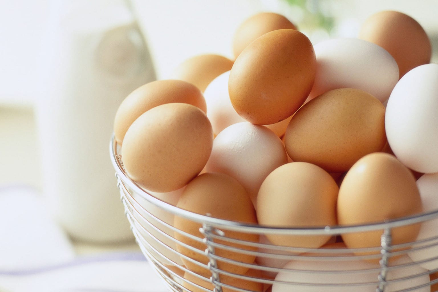 The Difference Between White & Brown Eggs?