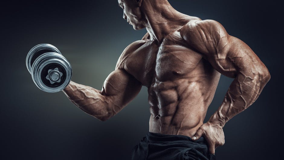 Training Tips for Faster, Bigger Results!
