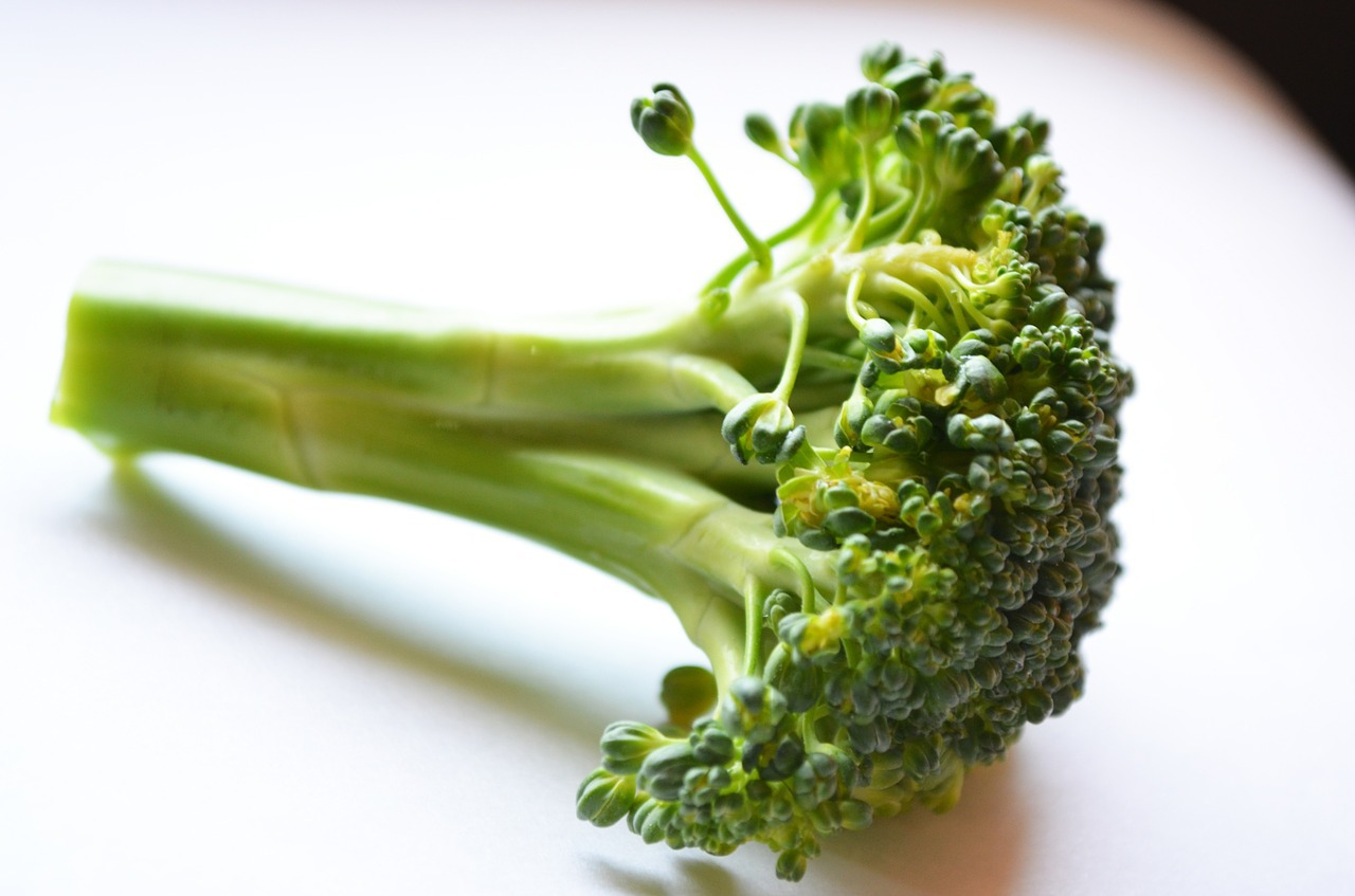 How Broccoli Sprout Powder Can Boost Your Energy